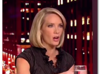 dana perino photo