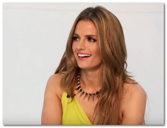 stana katic hot